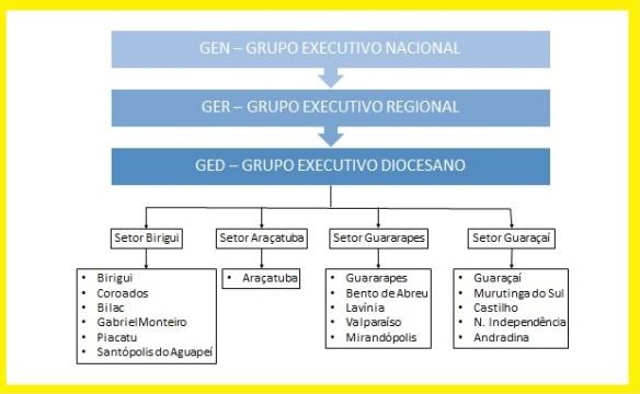 estrutura do MCC no Brasil